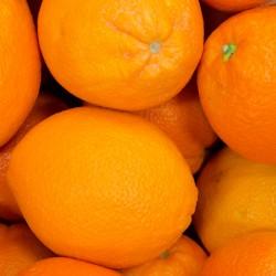 Orangen Valencia 1/2 Kiste