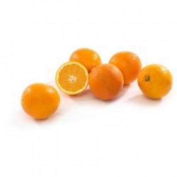 Orangen Valencia Griech 1 Kg